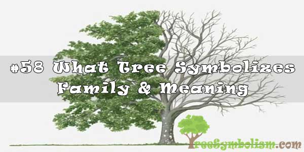 #58 What Tree Symbolizes Family & Meaning