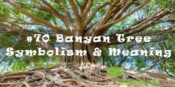 #70 Banyan Tree - Symbolism & Meaning