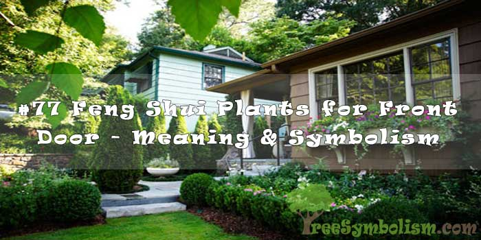 #77 Feng Shui Plants for Front Door - Meaning & Symbolism