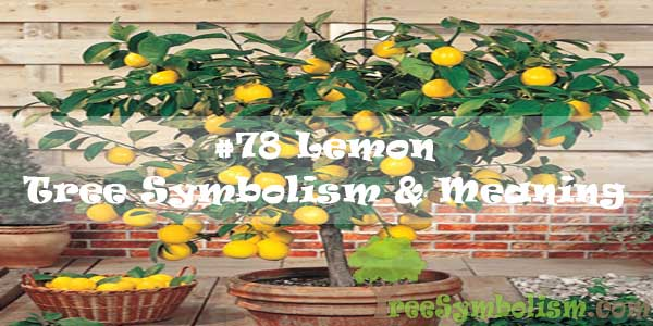 #78 Lemon - Tree Symbolism & Meaning