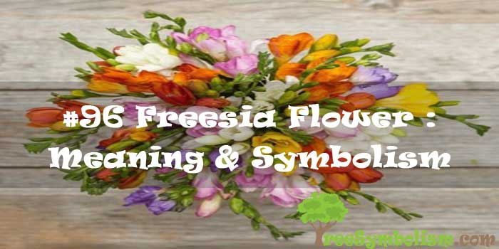 #96 Freesia Flower : Meaning & Symbolism