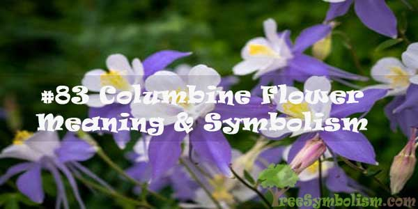 #83 Columbine Flower : Meaning & Symbolism
