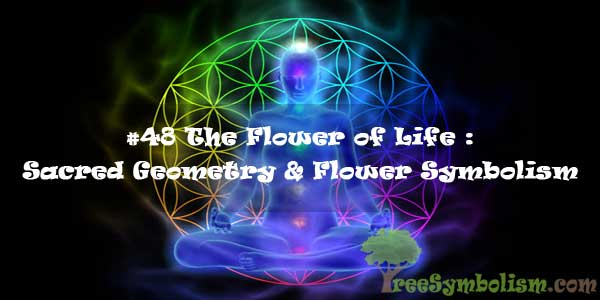 #48 The Flower of Life : Sacred Geometry & Flower Symbolism