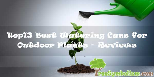 Top13 Best Watering Cans for Outdoor Plants - Reviews