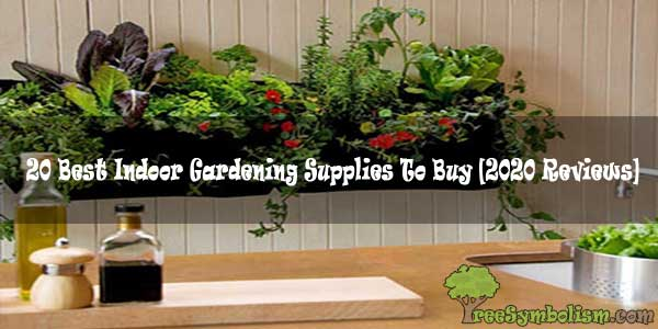 20 Best Indoor Gardening Supplies To Buy Reviews