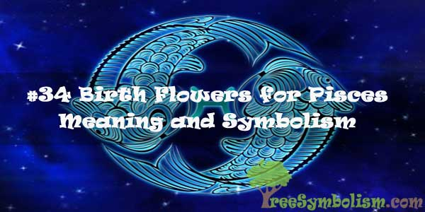Birth Flowers for Pisces - Meaning & Symbolism