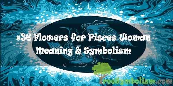 #36 Flowers for Pisces Woman - Meaning & Symbolism