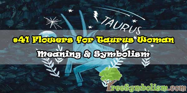 #41 Flowers for Taurus Woman - Meaning & Symbolism
