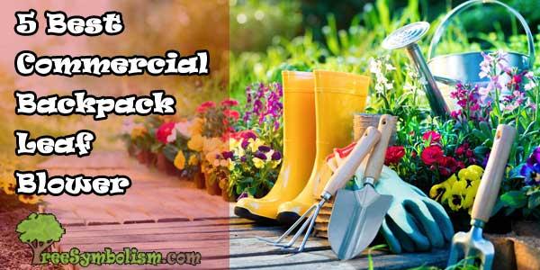 Top 5 Best Commercial Backpack Leaf Blower