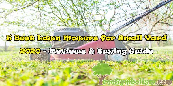5 Best Lawn Mowers for Small Yard 2020 - Reviews & Buying Guide