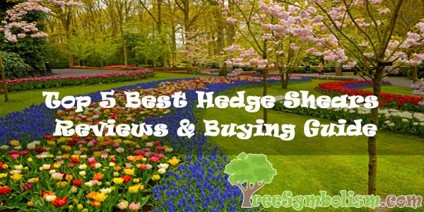 Top 5 Best Hedge Shears 2020 - Reviews & Buying Guide