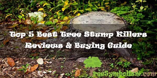 Top 5 Best Tree Stump Killers - Reviews & Buying Guide