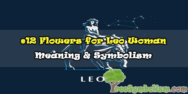 #12 Flowers for Leo Woman - Meaning & Symbolism