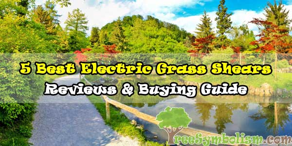 5 Best Electric Grass Shears - Reviews & Buying Guide