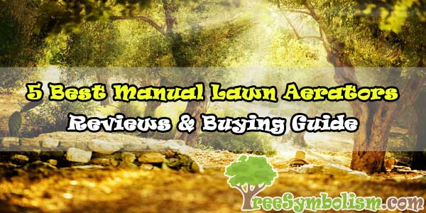 5 Best Manual Lawn Aerators 2020 - Top Reviews & Buying Guide