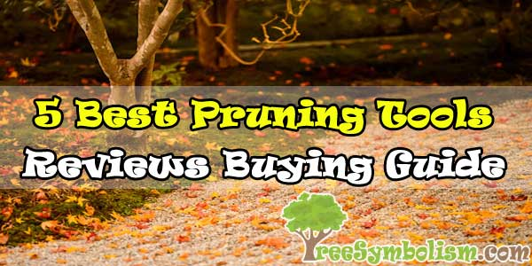 🍵5 Best Pruning Tools - Reviews & Buying Guide