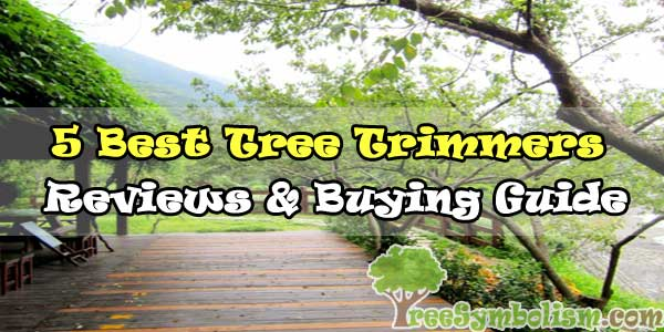 💡5 Best Tree Trimmers - Reviews & Buying Guide