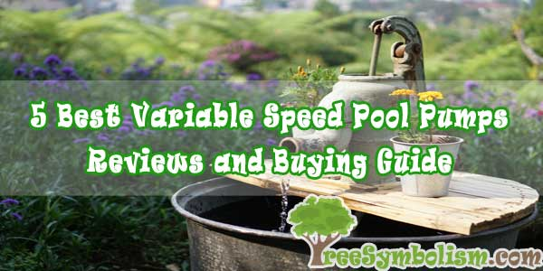 5 Best Variable Speed Pool Pumps - Reviews and Buying Guide