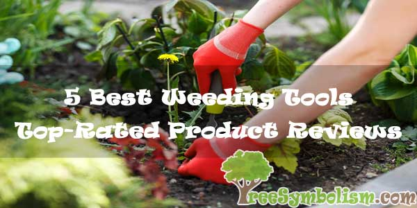 5 Best Garden Tools for Weeding - Top Reviews & Buying Guide