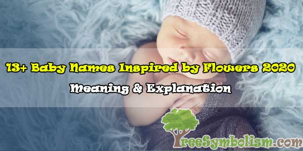 13+ Baby Names Inspired by Flowers – Meaning & Explanation