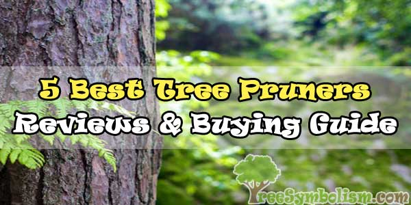 ️🎖️5 Best Tree Pruners 2020 - Reviews & Buying Guide