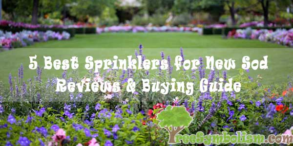 5 Best Sprinklers for New Sod - Reviews & Buying Guide