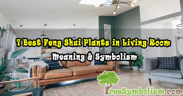 7 Best Feng Shui Plants in Living Room - Meaning & Symbolism