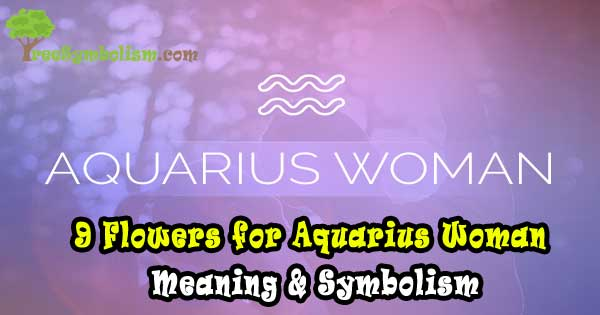 9 Flowers for Aquarius Woman - Meaning & Symbolism
