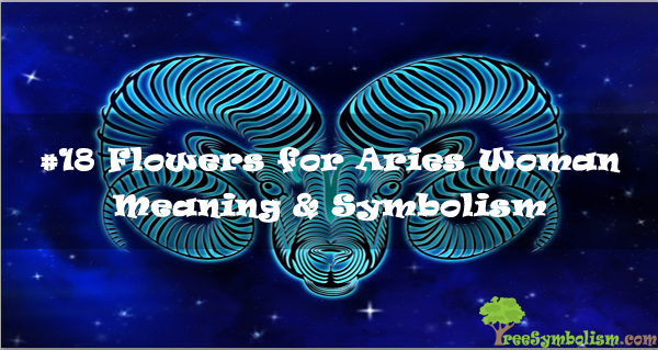 #18-Flowers-for-Aries-Woman-Meaning-Symbolism.jpg