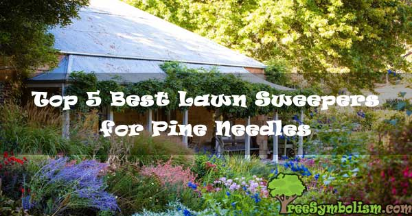 Top 5 Best Lawn Sweepers for Pine Needles