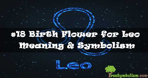 #18 Birth Flower for Leo - Meaning & Symbolism