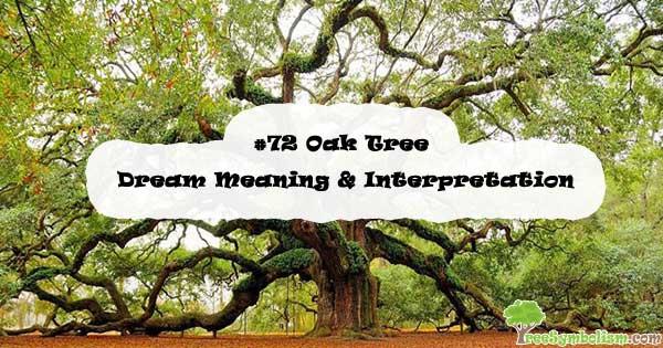 #72 Oak Tree - Dream Meaning & Interpretation