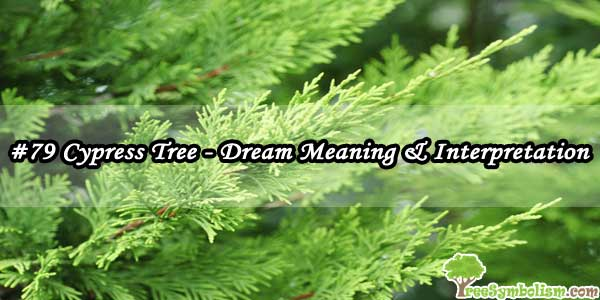 #79 Cypress Tree - Dream Meaning & Interpretation