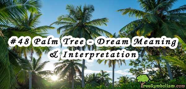 #48 Palm Tree - Dream Meaning & Interpretation