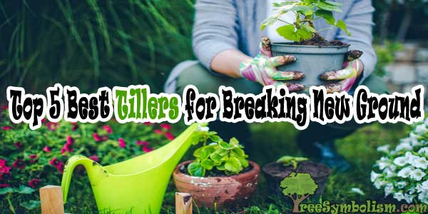 Top 5 Best Tillers for Breaking New Ground