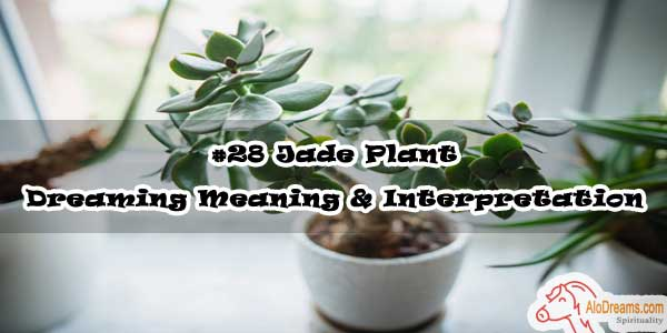 #28 Jade Plant - Dreaming Meaning & Interpretation