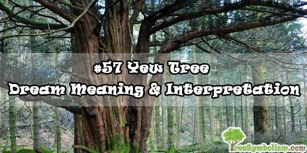 #57 Yew Tree - Dream Meaning & Interpretation