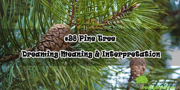 #98 Pine Tree - Dreaming Meaning & Interpretation