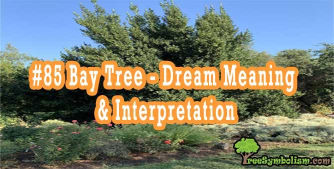 #85 Bay Tree - Dream Meaning & Interpretation