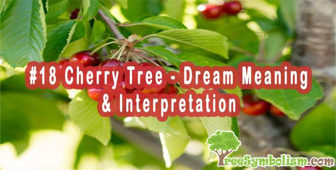#18 Cherry Tree - Dream Meaning & Interpretation