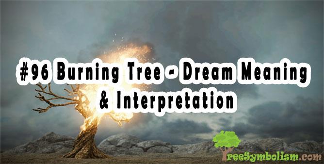 #96 Burning Tree - Dream Meaning & Interpretation